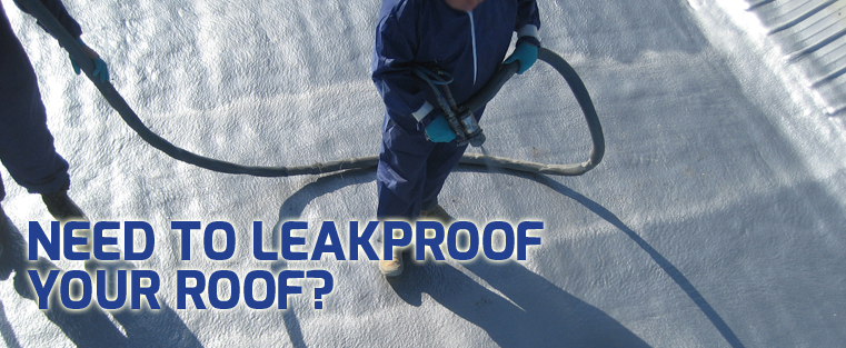 Need to Leakproof your Roof?